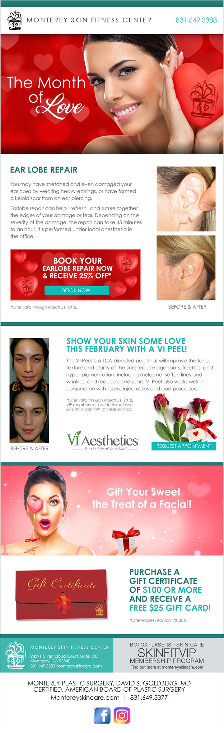 Plastic Surgeon Surgery Email Marketing Blast