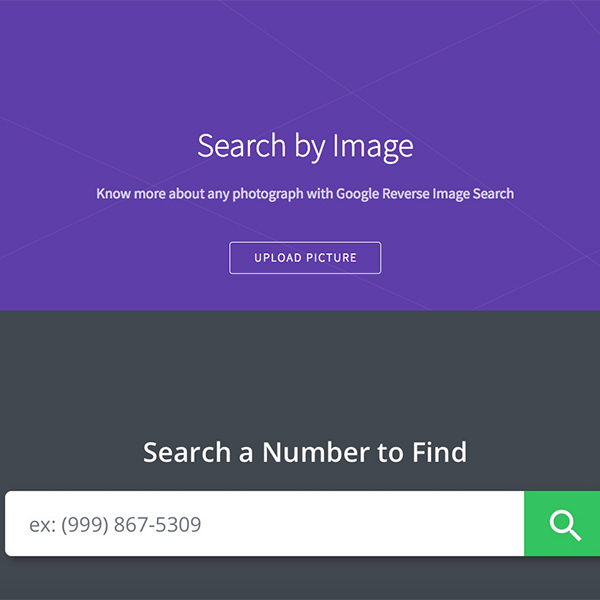 Google reverse image search user interface.